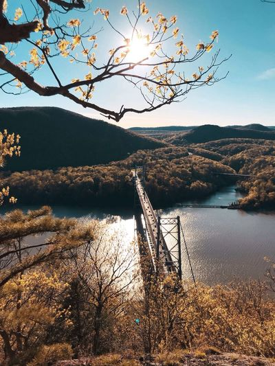 Sunset over the Hudson River Bridge Upstate New York New York River Sky Tranquility Tranquil Scene Beauty In Nature Scenics - Nature Water Plant Mountain Nature Sunlight No People Non-urban Scene Land Day Sun Tree Sunset Outdoors
