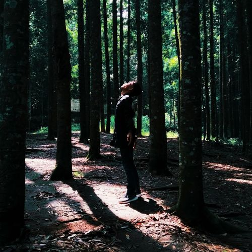 Side view of man standing by trees in forest