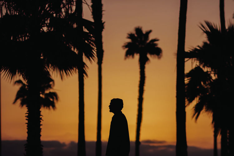 Erik Silhouette Tree Palm Tree Tropical Climate Sky Nature Real People Beauty In Nature One Person Lifestyles Orange Color Standing Outdoors Growth Scenics - Nature Contemplation Men