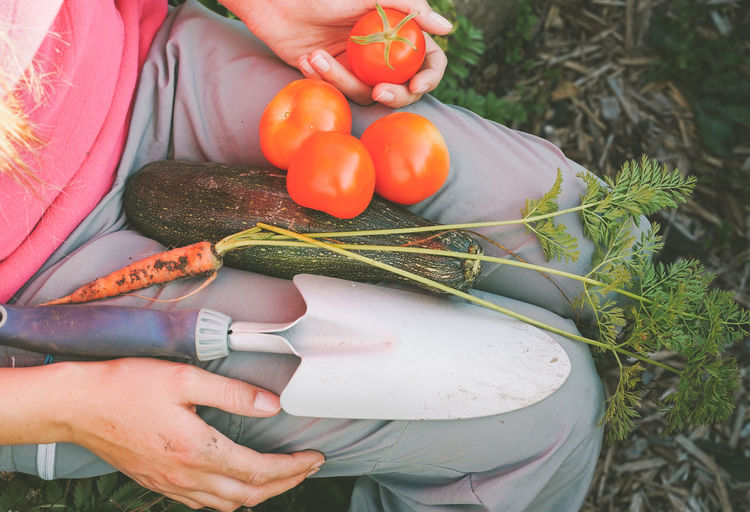Midsection of woman with spade and vegetables sitting in garden