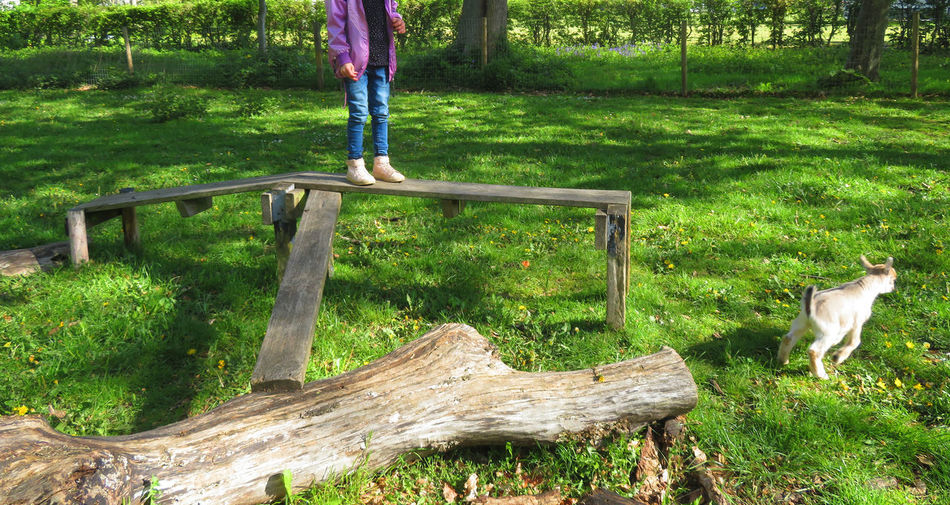 Low Section Childhood Tree Standing Human Leg Grass Springtime Decadence My Best Photo