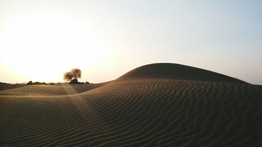 India Rajasthan Thar Desert Jaisalmer EyeEm Best Shots Popular Photos Tadaa Community