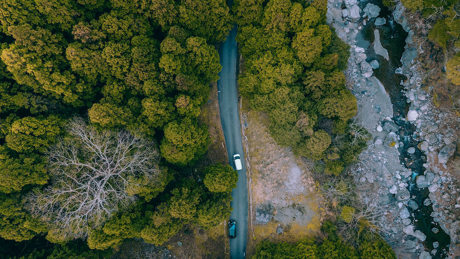 // nature from above // Japan Wanderlust Travel Destinations Nature Drone  Aerial View Green Color Greenery Plant Tree High Angle View Day Growth Beauty In Nature No People Outdoors Transportation Scenics - Nature Land Tranquility Non-urban Scene Water Tranquil Scene Forest Moss