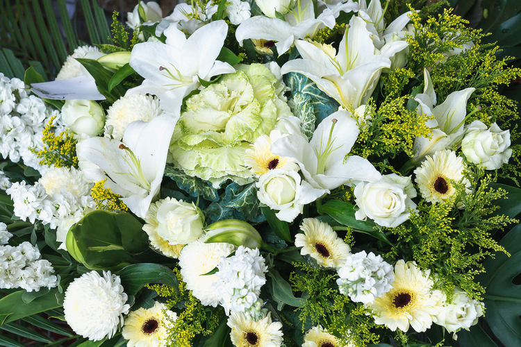 Flower Flowering Plant Vulnerability  Freshness Beauty In Nature Fragility Plant White Color Petal Flower Head Inflorescence Close-up Nature Leaf Plant Part Growth No People Bouquet High Angle View Flower Arrangement Outdoors Bunch Of Flowers