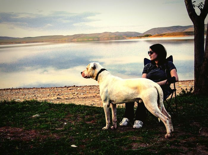 Young Woman With Dog Sitting At Lake Against Sky