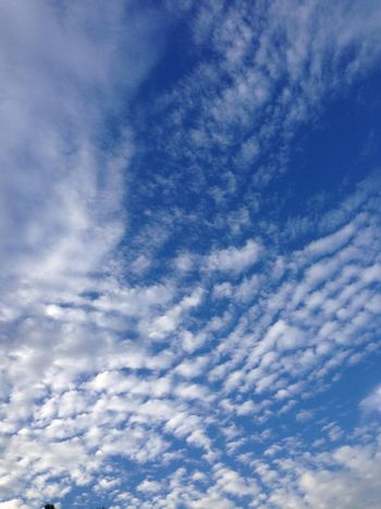 planet earth is blue... Sky Clouds Monday Blackday