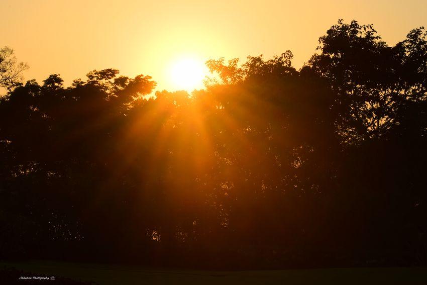 Evening Clicked On Nikon D3300 Sunset Park Man Made Space No People Orange Sky Sun Rays Through Trees Sun Silhouette Sky