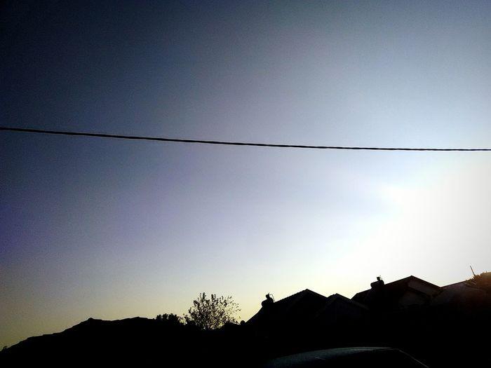 African Skies Layersoflight Tree Silhouette Sky Telephone Line Astronomy