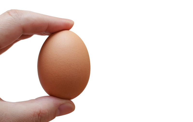 Hand Holding An Egg Isolated On White Background