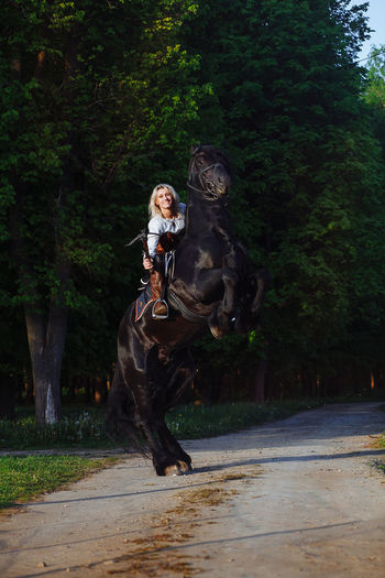 Animal Themes Full Length Horse Horse Photography  Horse Riding Leisure Activity Lifestyles Tree #FREIHEITBERLIN