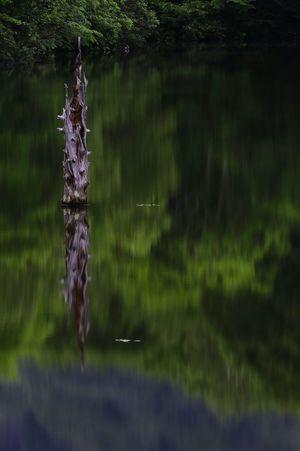 また戸隠ミラーワールド😁 EyeEm Gallery EyeEm Best Shots Ndfilter Nature EyeEm EyeEm Nature Lover Eyeem Photography Nature Photography Water Reflections 順番がメチャクチャ💦💦
