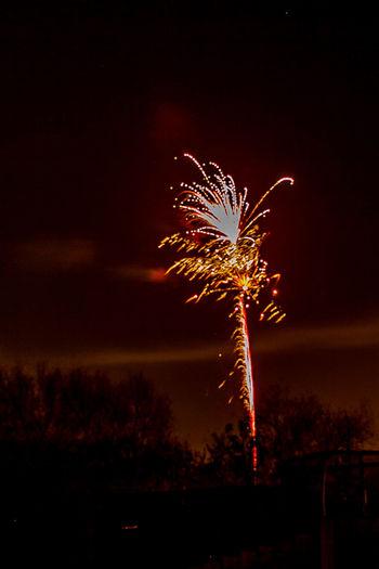 Fireworks Houses Nightphotography Bonfire Night Firework Display Fireworks In The Sky Fireworks! Fireworksphotography Garden Photography Night