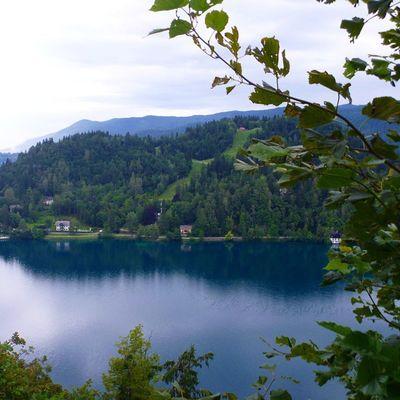 воспоминания  отпуск словения озеро Блед путешествия туризм tourism travel holiday Slovenia lake Blad немного покоя в ленту...