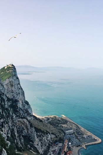 Rocks Gibraltar Views Majestic Nature From Above  Ocean View Nature Photography Bird In Flight On Top Of The World Thrill High Angle View High Above Blue Sky Ocean And Sky Sky And Sea