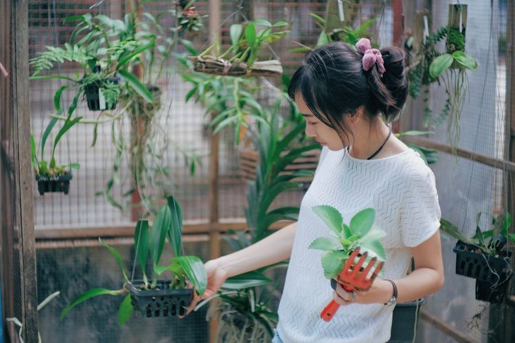 Adult Beautiful Woman Casual Clothing Flower Flower Pot Flowering Plant Gardening Growth Hair Hairstyle Holding Lifestyles Looking Nature One Person Outdoors Plant Potted Plant Real People Standing Three Quarter Length Waist Up Women Young Adult Young Women