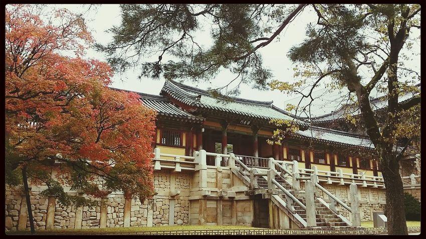Bulguksa South Korea Temple First Eyeem Photo