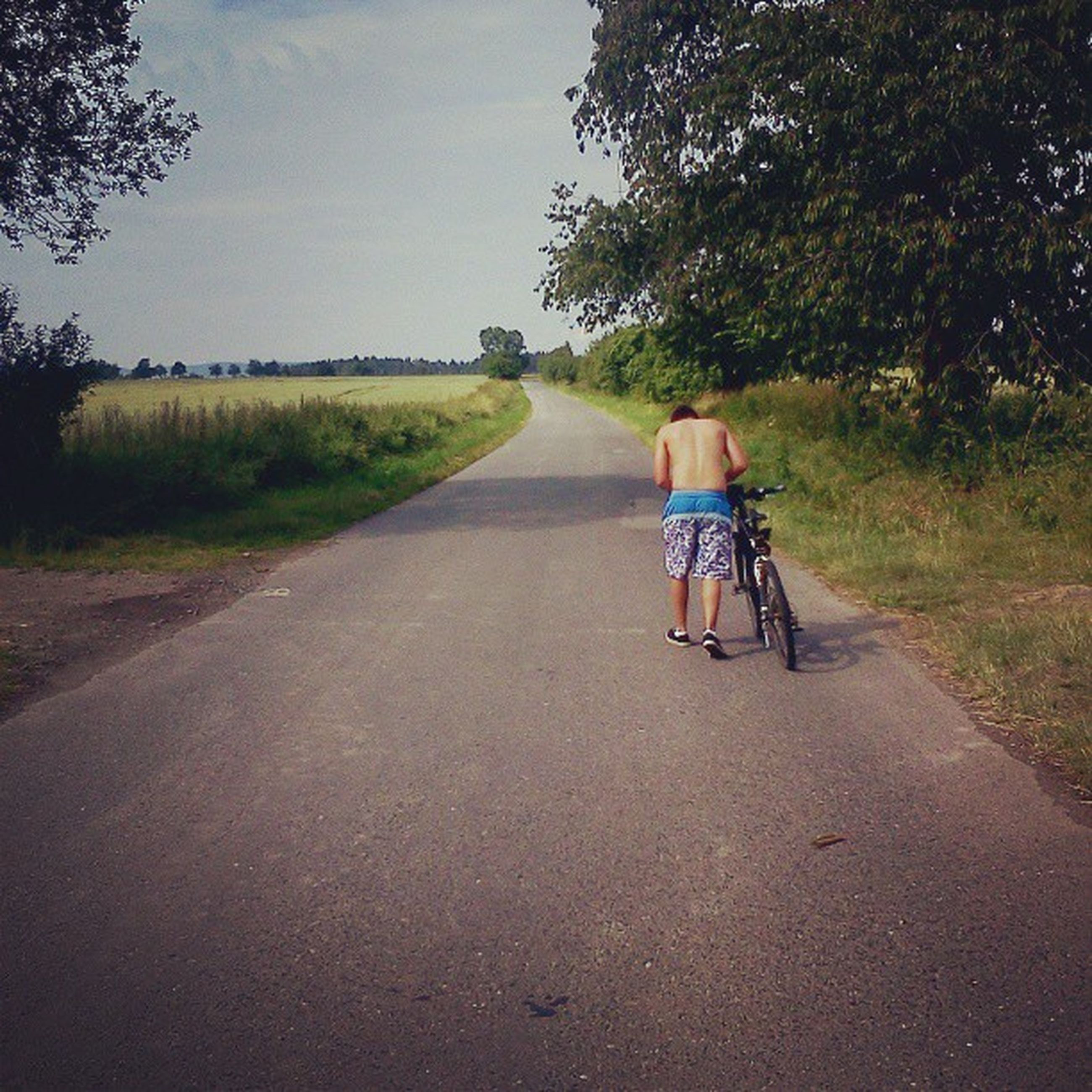 the way forward, full length, rear view, road, tree, walking, transportation, lifestyles, diminishing perspective, leisure activity, grass, country road, dirt road, vanishing point, bicycle, men, sky, landscape