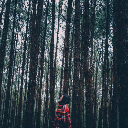 Woman Looking Up In The Forest