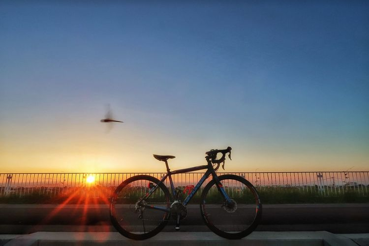 EVery MOrning RIder Cyclist Cycling Morning Morning Sky サイクリング 自転車 ロードバイク 朝日 トンボ グラデーション Bicycle Roadbike Sunrise Sun 太陽 Sunlight Clear Sky Beauty In Nature Morning Glory EyeEm Gallery EyeEm Best Shots Beautiful Nature EyeEm Nature Lover EyeEmDailyPhoto Dramatic Sky