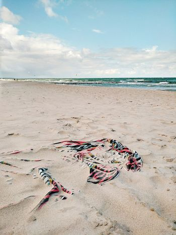 Vom Winde verweht Beach Sand Sea Summer Vacations Horizon Over Water Nature Tranquility Outdoors Sunlight Landscape Beauty In Nature Water Cloud - Sky Towel Hand Towels Bath Towel Windy Wind Paper Towel Baltic Sea Meer Throwback Colors Drift Away