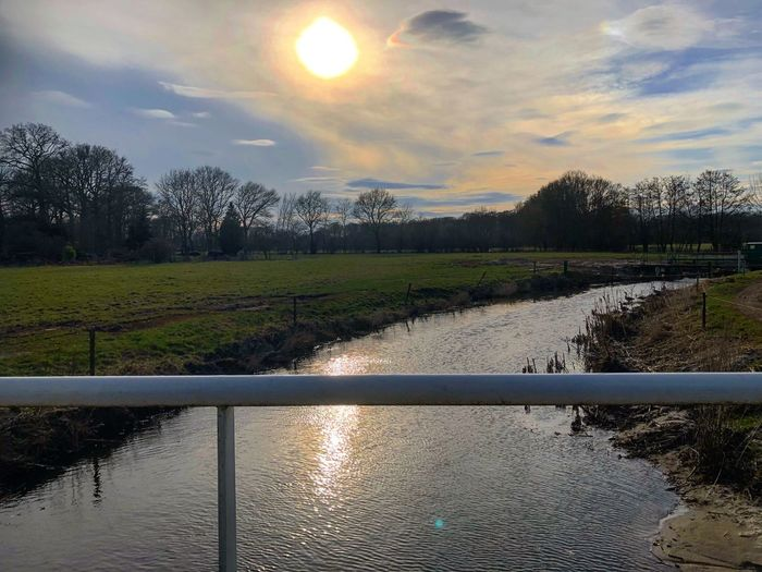 Holland Iphone8plus Holland Water Sky Cloud - Sky Reflection Beauty In Nature Tree Nature Outdoors Tranquility No People Scenics Day Grass