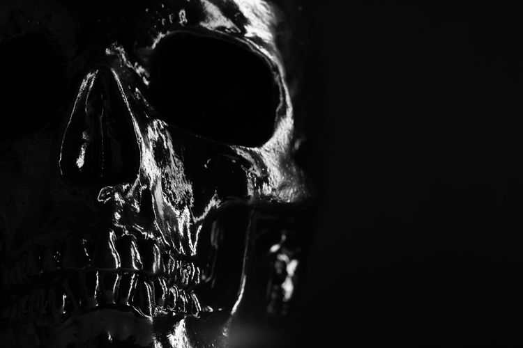 Model of human skull painted with black on dark background with illumination. Concept of fear and horror, Halloween celebration. Copy space Bone  Human Skeleton Indoors  Close-up Human Skull Black Background Spooky Skeleton Studio Shot Dark Still Life Body Part Mystery Fear History Animal Body Part Skull Aggression