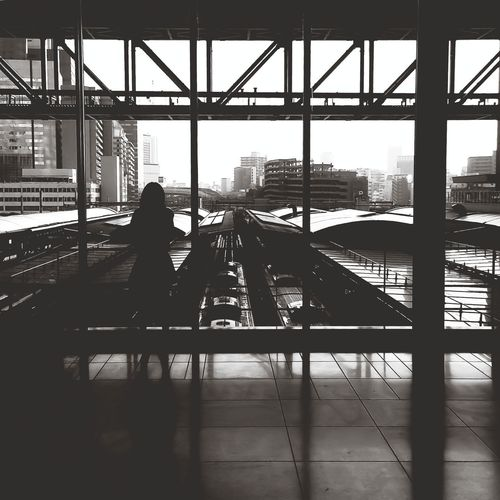 Rear View Of Silhouette Woman Overlooking Cityscape