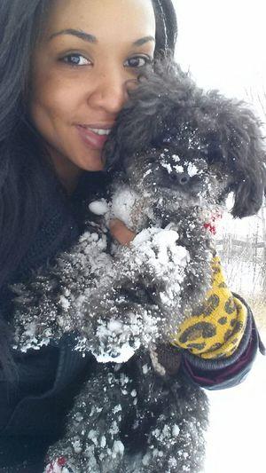 Dogslife Snowballs My Furry Kid Dog Walking MYLOVE<3