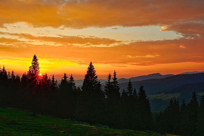 Pasul Prislop Beauty In Nature Cloud Cloud - Sky Dramatic Sky Idyllic Landscape Majestic Mountain Nature No People Non-urban Scene Orange Color Outdoors Scenics Silhouette Sky Sunset Tranquil Scene Tranquility Tree