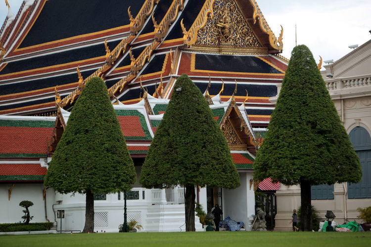 Trees against traditional building in bangkok