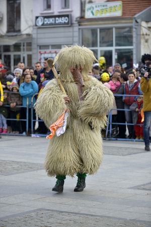 PRILEP, MACEDONIA. FEBRUARY 18 , 2018- Performers wearing animal fur and mask participates in the International carnival Prochka 2018 in the Macedonian town of Prilep. ' 2018 Carnival Celebration Livestock Macedonia Masque Skopje Ugly Animal Themes Animism Day Festival Fur Mask Ohrid Outdoors Paganism Pig Prilep Procka Scary Wild Pig