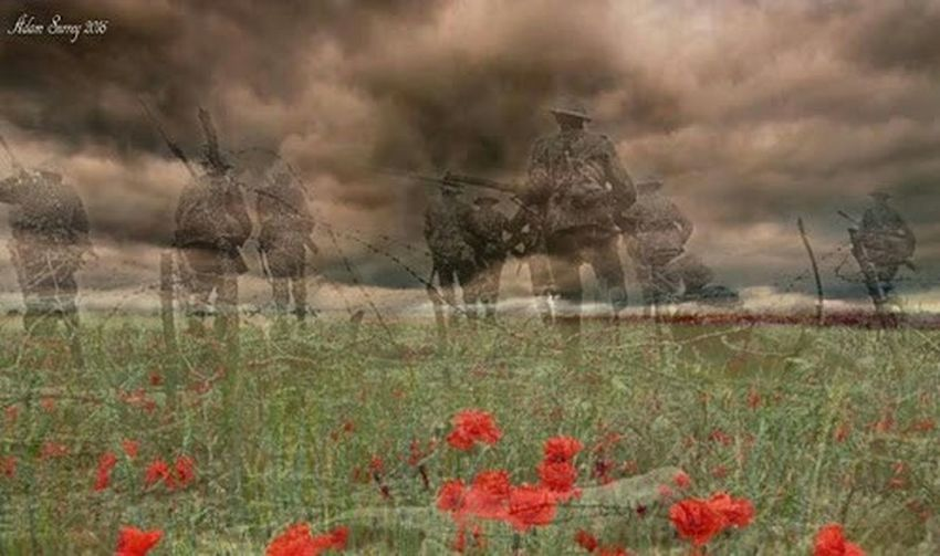 """""""They shall grow not old, as we that are left grow old: Age shall not weary them, nor the years condemn. At the going down of the sun and in the morning, We will remember them."""" By Ghosts of time. Veteransday Ghostsoftime Poppy Flowers Nature Grass Flower Uncultivated Field Plant Weather Non-urban Scene Atmospheric Mood Landscape Rural Scene No People Tree Day Scenics Beauty In Nature Storm Cloud Sky Peoms"""