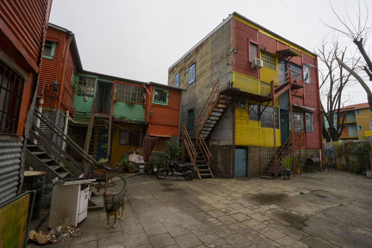 La Boca Courtyard Aged Argentina Buenos Aires Cement Cloudy Color Corrugated Corrugated Metal Courtyard  Day Distressed Dog Green La Boca Over Paint Painted Red Taking Photos Yellow