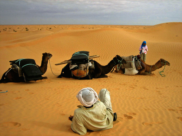 Trip through the desert Beauty In Nature Camel Desert Desert Beauty Men Nature Pause Real People Sahara Sand Dune Scenics Tranquil Scene Tranquility Travel Photography Tunesien