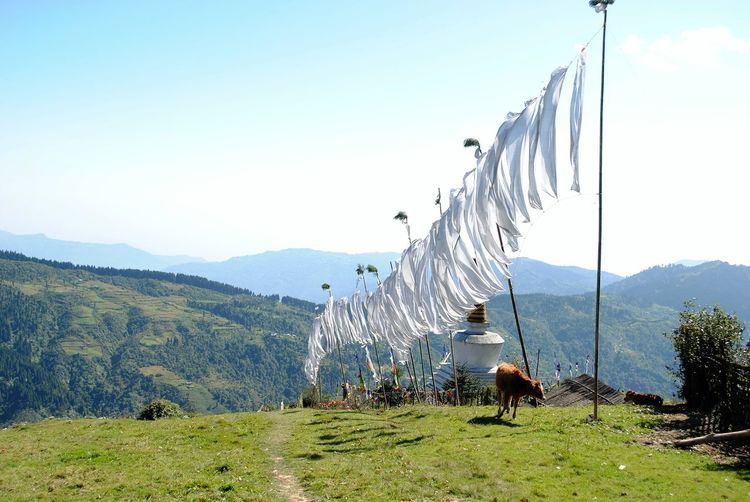 White Clothes Drying On Line Over Mountain Against Clear Sky