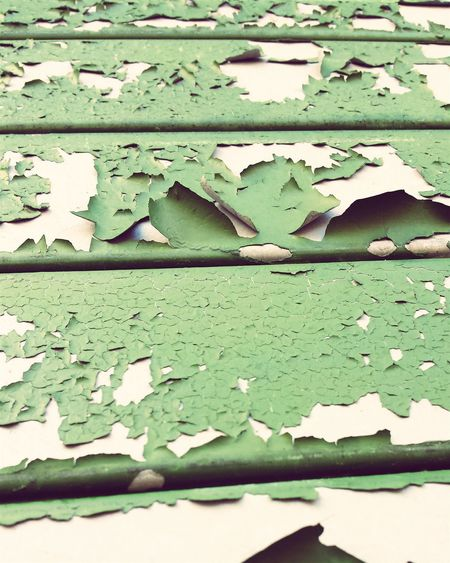 Paint Decay No People Minimalism Chipped Paint Street Photography Green Color Built Structure Exterior Weathered Textures And Surfaces Decay Share Your Adventure Exploremore City Park Urbanphotography Old Paint Observations Dont Eat The Paint From My Point Of View Wallporn