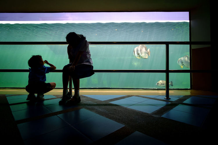 Aquarium Childhood Fish Green Illuminated Real People Silhouette Street In Color Street Photography Streetphotography Togetherness Two People Underwater Eyeem Philippines