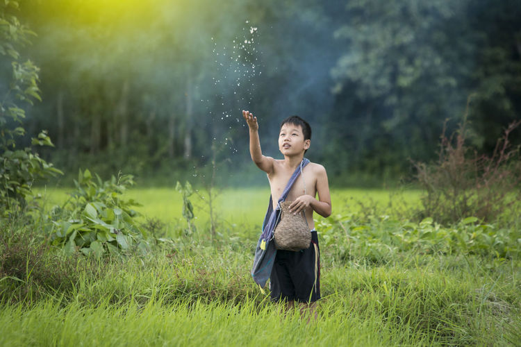 Boy Throwing Seeds On Field