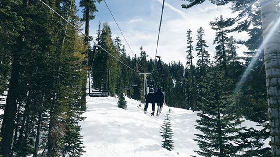 45/366 | A Sunday kind of love. 😚 Sundaymoments Kneebraces Oldladyproblems 366Project Day45 Goldenbullet366 Sierraattahoe Snowboardlife Wintertype Ladieswhoshred Photooftheday