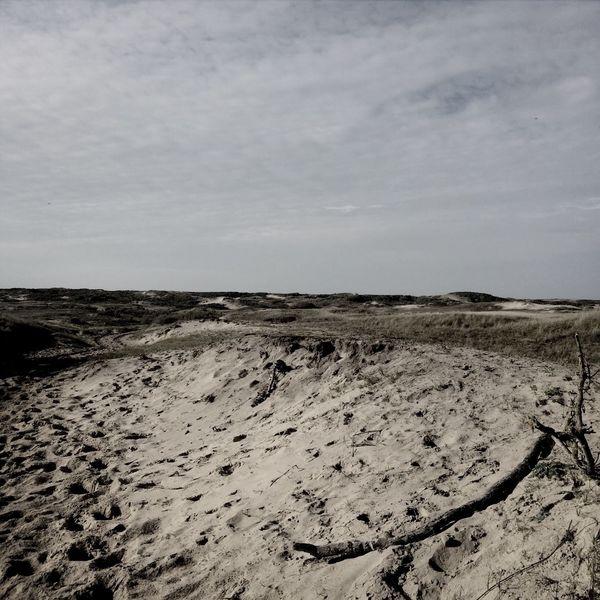 Dunes Scenery Netherlands Nature