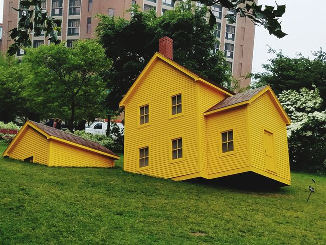Olga Mulugeta Бостон EyeEm Selects Taking Photos Sommergefühle EyeEm Best Shots Built Structure Architecture Building Exterior Tree Yellow No People Day Outdoors Nature Sky