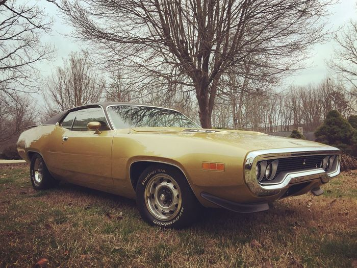 1971 Road Runner 538 Horses 495 Cubic Inches 383 My Pretty Little Bird