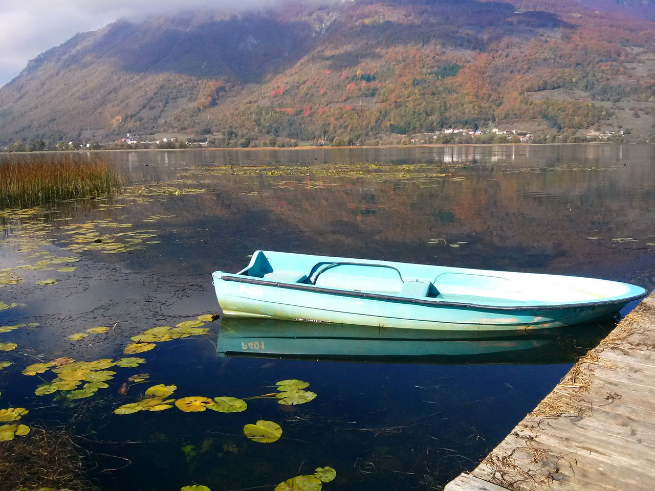 water, reflection, lake, nature, mountain, transportation, day, no people, nautical vessel, tranquility, mode of transport, outdoors, moored, beauty in nature, tranquil scene, scenics, flower, tree