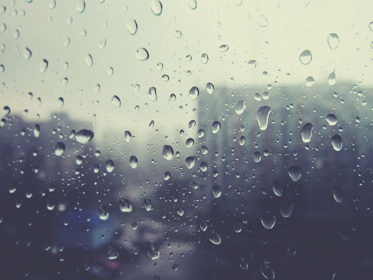 The Five Senses Belarus, June Rain Drops Windows EyeEm Bestsellers