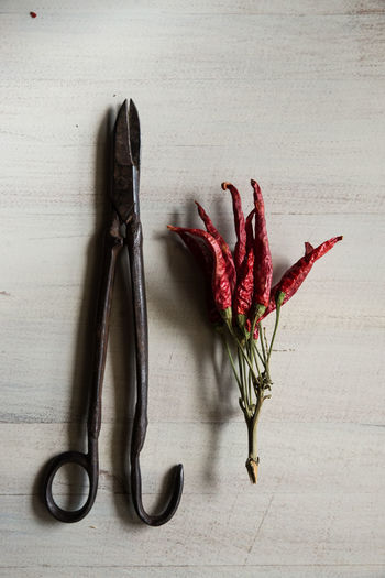 Directly Above Shot Of Scissors By Dried Red Chili Peppers On Table