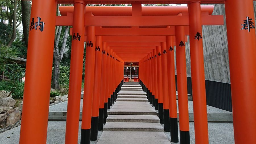 Red In A Row Symmetry Tourism The Way Forward Shrine Tradition Travel Destinations Day Indoors  No People