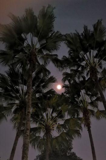 #moon #bright