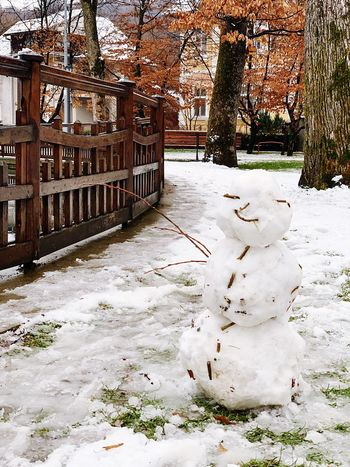 Snow Cold Temperature Winter Tree Nature Plant No People Land Art And Craft Human Representation Architecture Tree Trunk Snowman Representation Outdoors Built Structure Frozen White Color Day Trunk