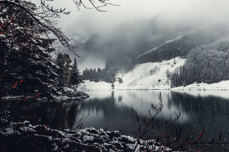 Ich war wiedermal unterwegs, habe hier an der Stelle am Seealpsee pause gemacht und meinen Kaffee genossen. Unglaublich entspannend Water Beauty In Nature Winter Cold Temperature Tree Snow Fog Mountain Nature Plant Lake Tranquil Scene Scenics - Nature Tranquility Day No People Sky Reflection Outdoors Snowcapped Mountain Berge Bergsee Bergsteigen Reflections In The Water Reflection Lake Reflections Mood Moody Sky Moody Mood Captures Bad Condition Bad Habit Snow Covered Lakeview Lake View Dramatic Landscape Dramatic Sky Cloud - Sky Clouds And Sky Clouds Foggy Foggy Weather