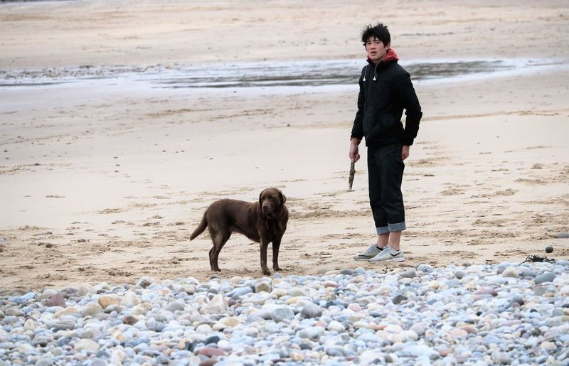 Full length of teenage boy with dog at beach